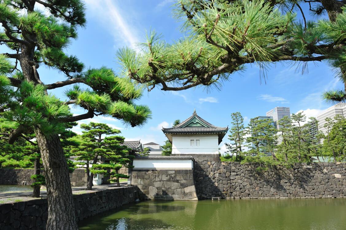 即位後朝見の儀とは新しく天皇としてご即位をされた後に公式に日本を代表する人物たちとお会いする儀式