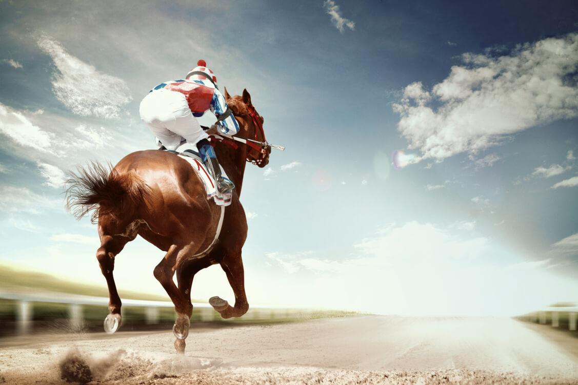 駑馬十駕の精神で頑張ってきた騎手と馬