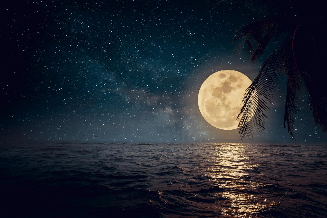 十六夜の美しい月