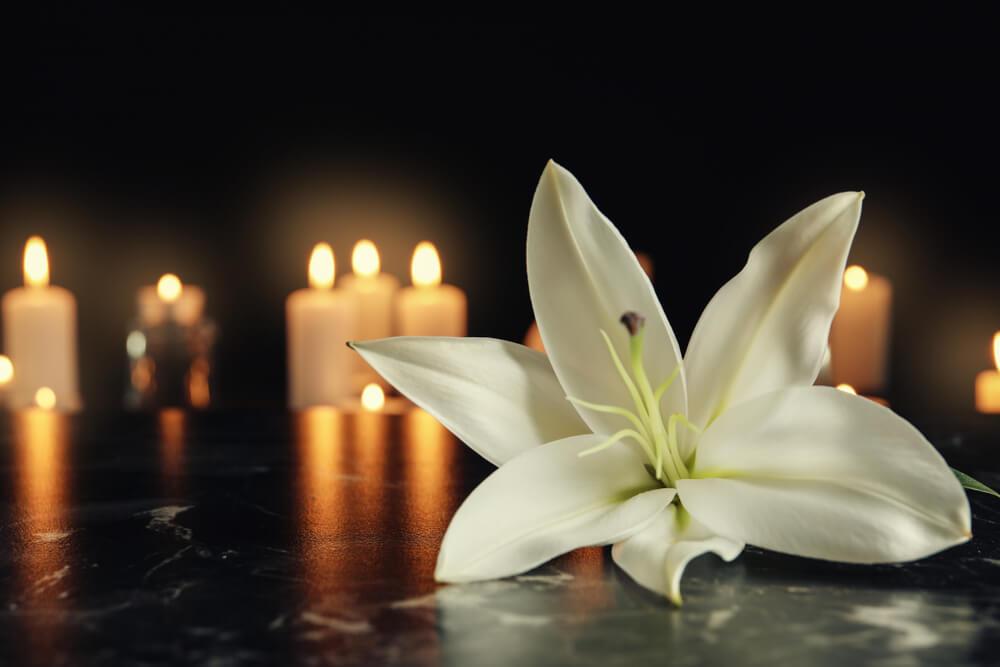 英霊に向けられた花
