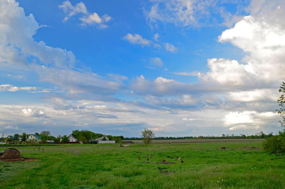 嵐の前で静かな草原