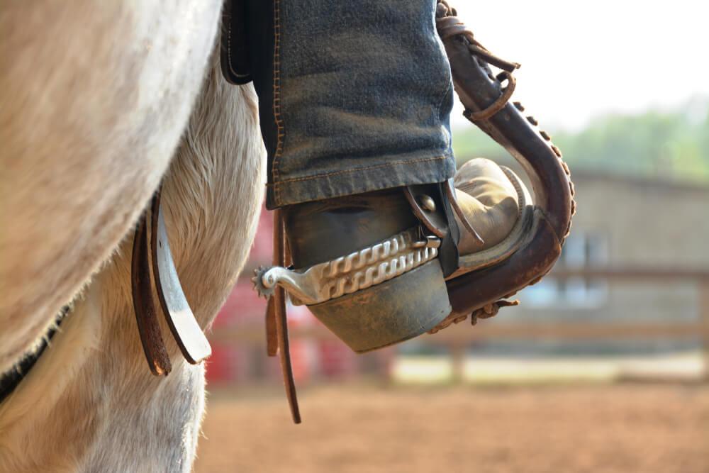 馬に拍車をかける