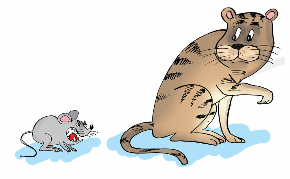 窮鼠猫を噛むが表現された絵画