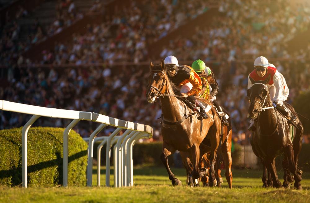 競馬はライト層の獲得に尽力して馬女を生み出した