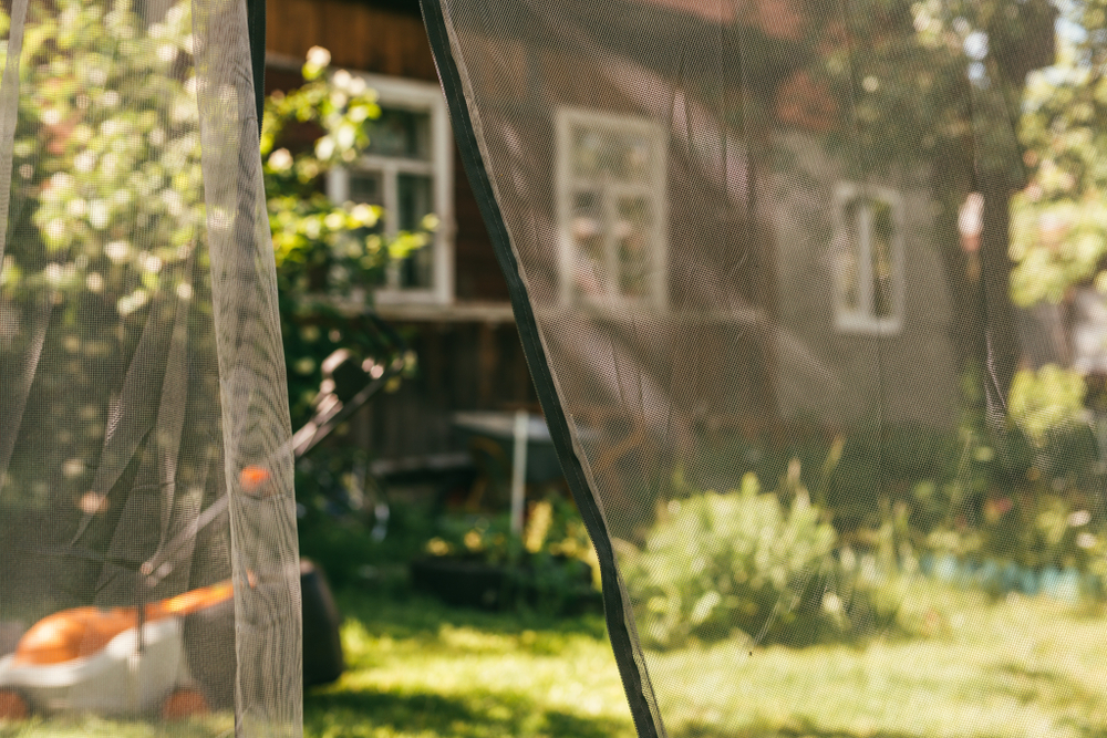 物事の蚊帳の外に置かれるのは寂しい気持ちだ