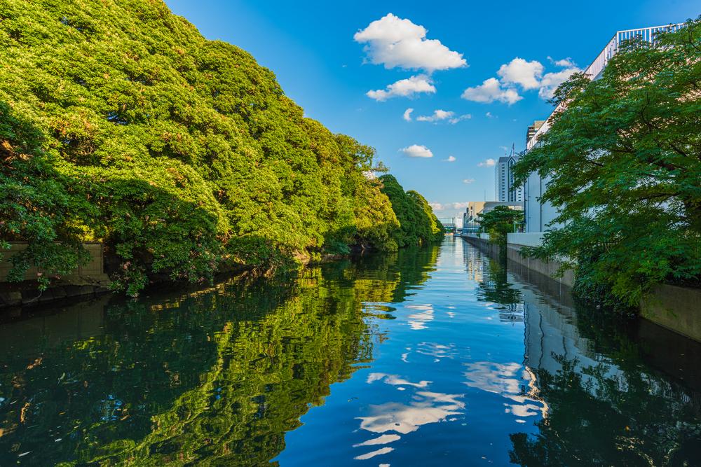 徳川御三家は江戸城の徳川政府から分かれている