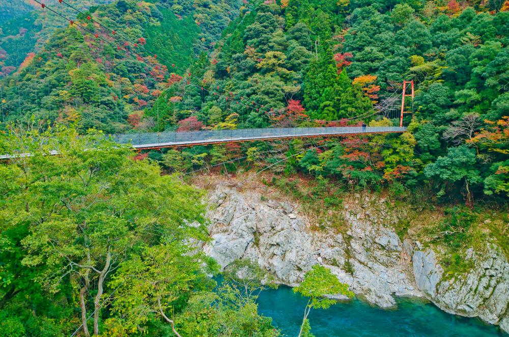日本三大渓谷の美しさに魅了される