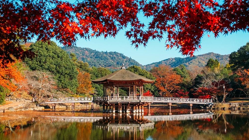 南都八景の美しさを目当てに奈良に行く人は多い