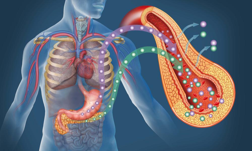 体内で血糖値スパイクが起こっている図