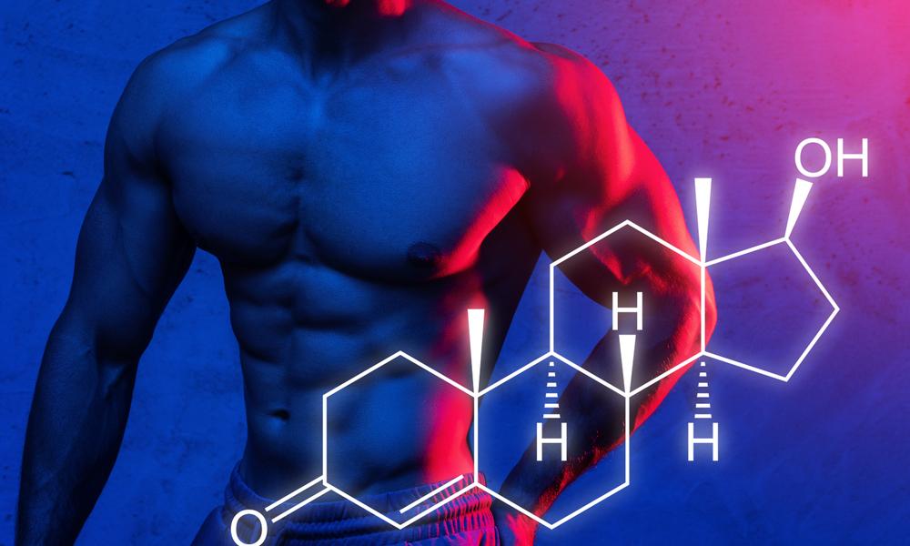 テストステロン値の高い筋肉質な男性